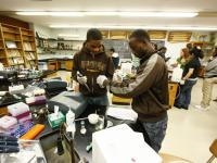 Students in Biology Bachelors Program